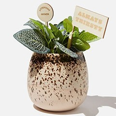 Cotton On personalised gifts deals