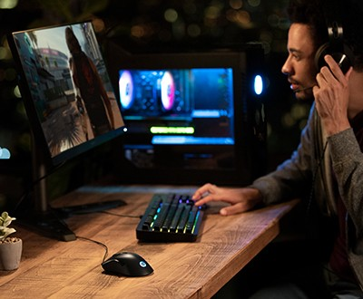 Man using desktop